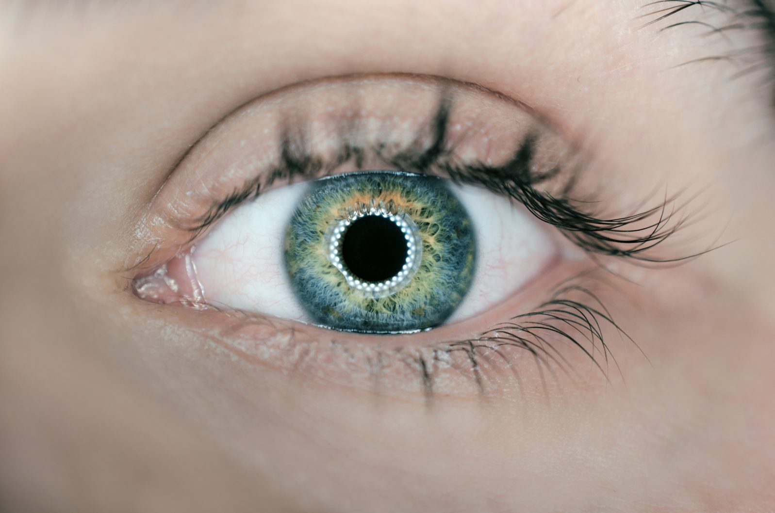 Eyeball with ring light reflection in pupil